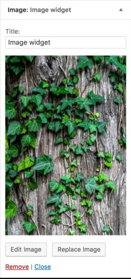 Fitur Terbaru Di WordPress 4.8 - Image Widget