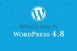 WordPress 4.8 menambahkan beberapa fitur baru yang hebat